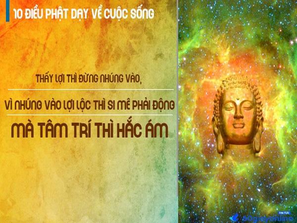 Những câu nói hay của Phật về cuộc sống