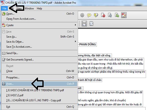 cắt file pdf bằng adobe 03