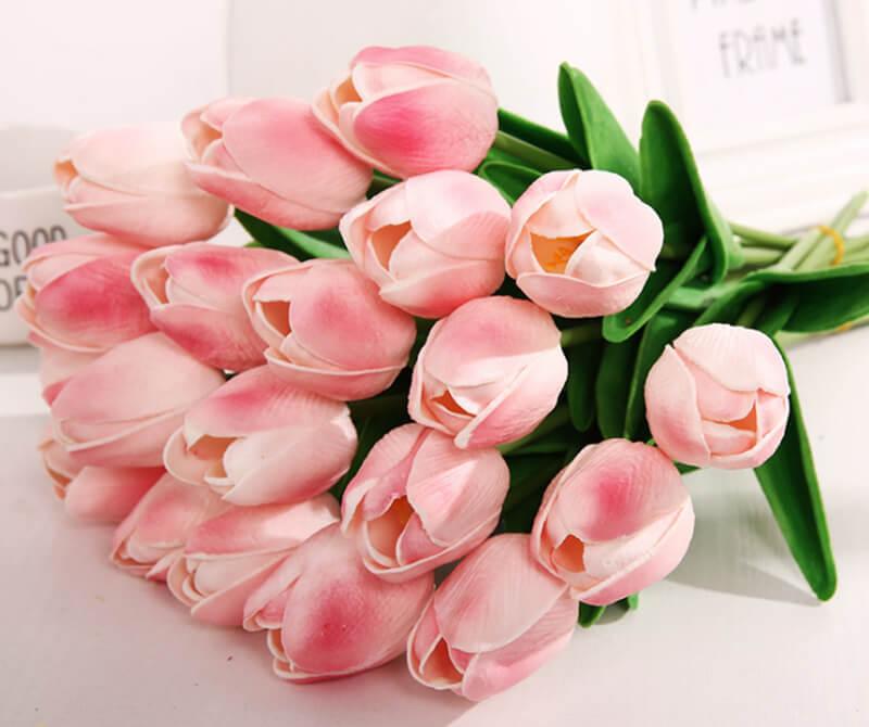 ý nghĩa khi tặng hoa tulip