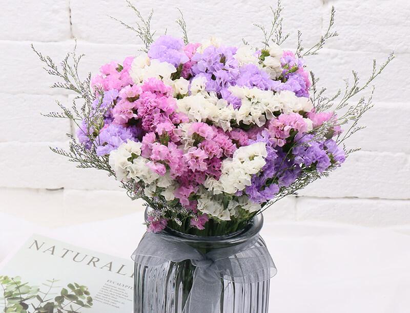 Ý nghĩa hoa salem trong tình yêu
