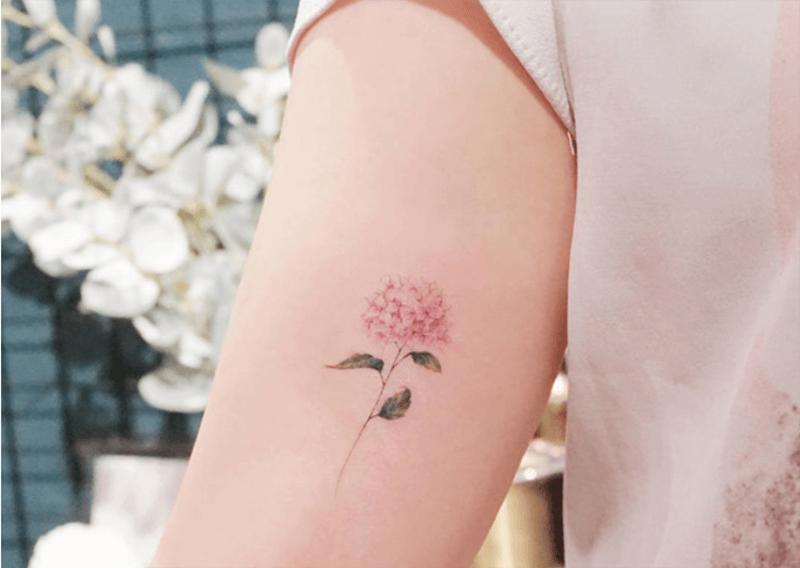 Hình xăm hoa cẩm tú cầu trên tay