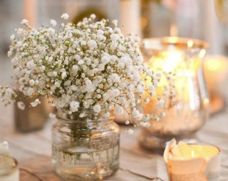 hoa baby có ý nghĩa gì trong tình yêu