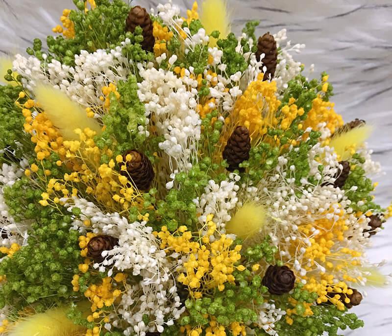 Hoa baby vàng