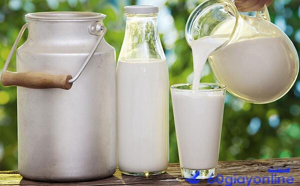 sữa chua giảm cân