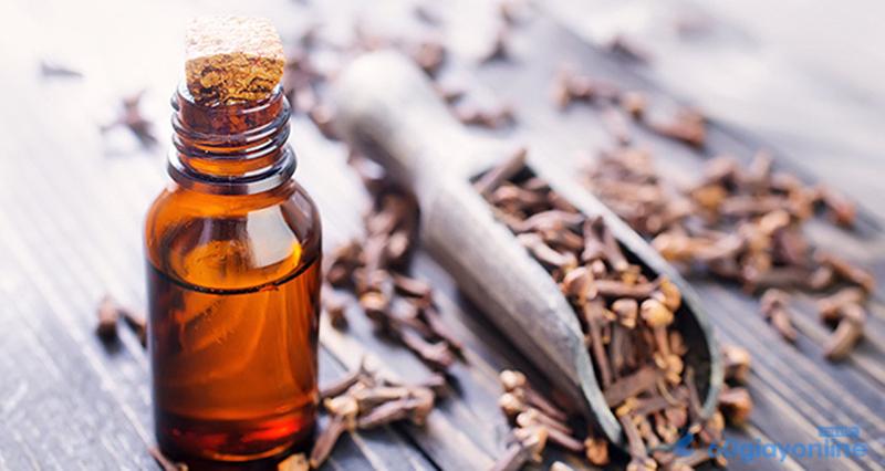 Tinh dầu đinh hương được mọi người ưa chuộng bởi tínhchống oxy hóa,kháng khuẩn vàkháng viêm cao.