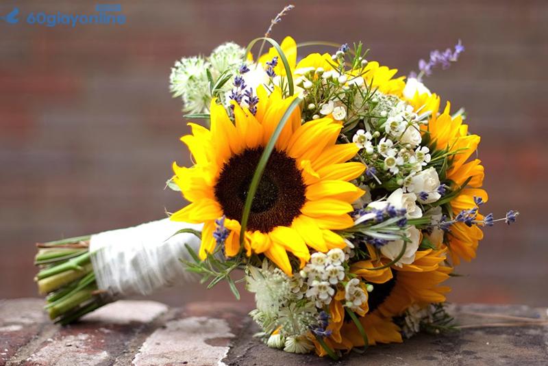 hoa hướng dương tặng mẹ