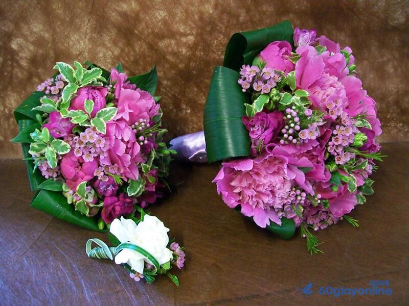 Hoa cẩm chướng tượng trưng cho 1 tình yêu tinh khiết