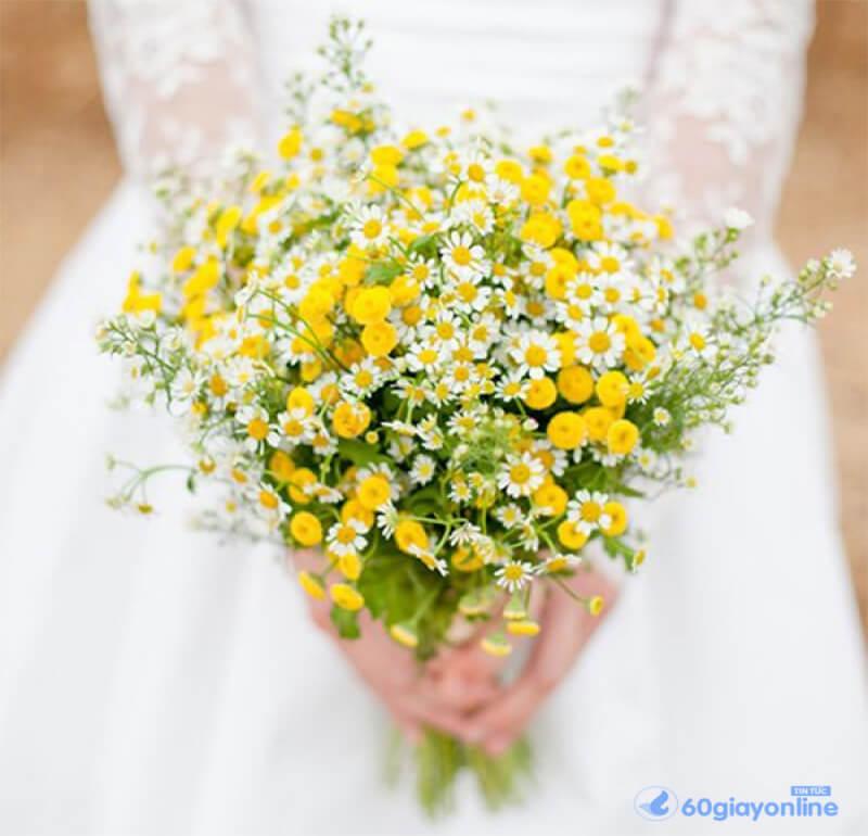 Một bó hoa cúc xinh đẹp thích hợp làm hoa cưới
