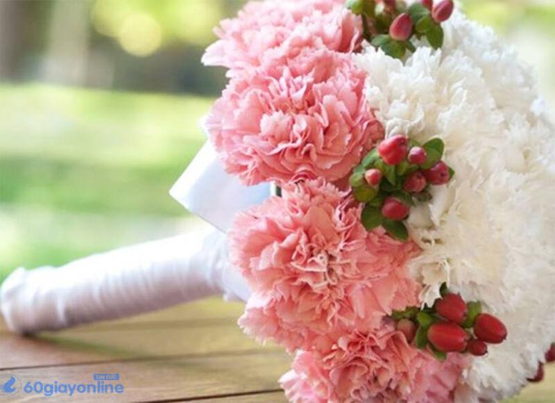 Hoa phong lan mang lại vẻ sang trọng