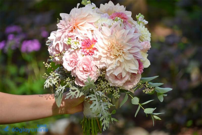 Thược Dược rất thích hợp dùng làm hoa cưới cầm tay