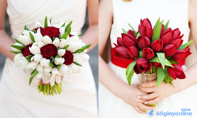 Hoa Tuliptượng trưng cho sự thanh khiết
