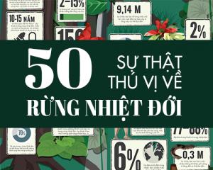 Cover [Infographic] 50 sự thật thú vị bất ngờ về rừng nhiệt đới